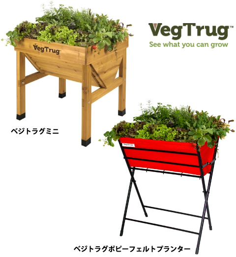 works_vegtrug02