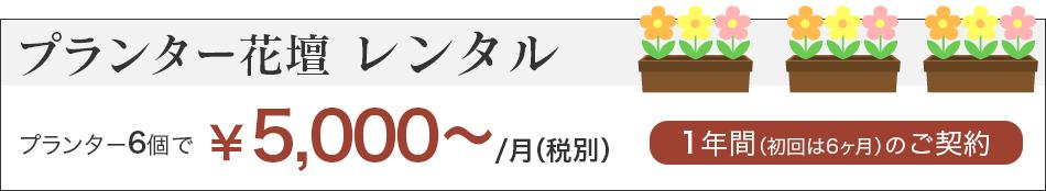プランター花壇レンタル5000円〜月